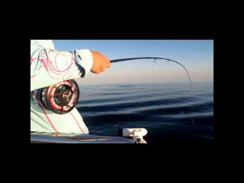 Tuna FLY FISHING in AUSTRALIA :))
