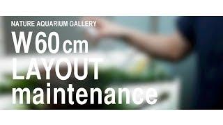 Film ADA: pielęgnacja akwarium 60p