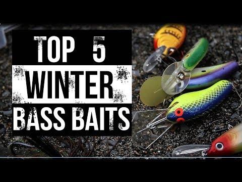 Top 5 Winter Bass Fishing Baits