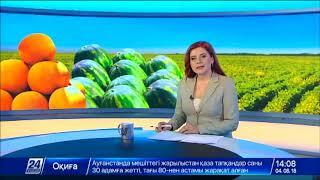 Выпуск новостей 14:00 от 04.08.2018
