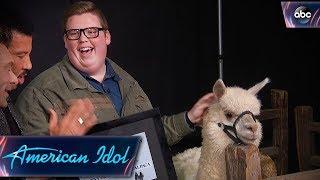 Noah Davis Gets His Alpaca on American Idol - Finale - American Idol 2018 on ABC - Video Youtube