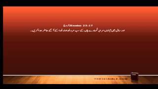 Bible Urdu 02 Exodus