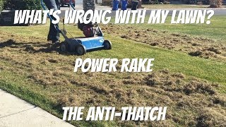 Why and how to power rake or dethatch a lawn
