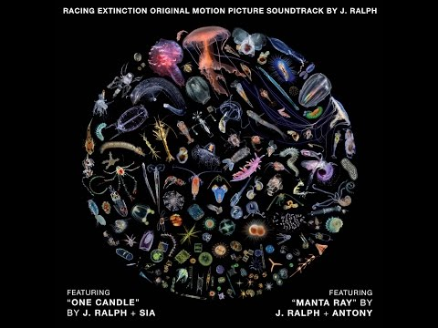 """""""Manta Ray"""" by J. Ralph & Anohni (F.K.A. Antony) - Original Song from Racing Extinction SNDTRK AUDIO"""