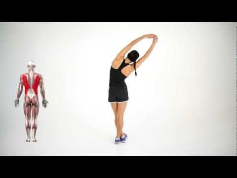 In welcher Weise der Bauch und die Spannstange zu entfernen