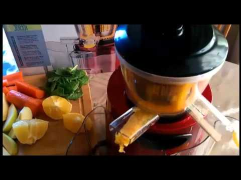 Gourmia GSJ200 Masticating Slow Juicer