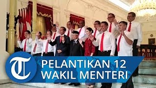 Resmi! Jokowi Lantik 12 Wakil Menteri untuk Kabinet Indonesia Maju