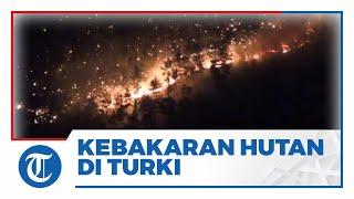 Kebakaran Hutan Hebat di Turki Tewaskan 3 Orang dan 58 Orang Dirawat karena Luka Bakar