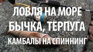 Рыболовный клуб лефа владивосток