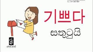 Learn Korean In Sinhala - Lesson 13 / WORD BANK Ep. 04