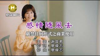 謝宜君-感情隨風去【KTV導唱字幕】1080p HD