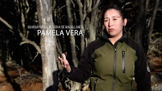 Laboratorio Austral - Pamela Vera / Reserva Magallanes