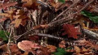 Travi$ Scott Ft T.I. & 2 Chainz -- Upper Echelon