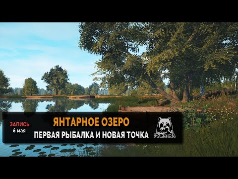 Новая точка на янтарном озере