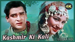 Kashmir Ki Kali (4K) - कश्मीर की कली - Full 4K Movie - शम्मी कपूर - शर्मिला टैगोर