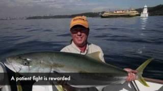 Sydney Harbour kingfish, 108cm 10kg [VIDEO]