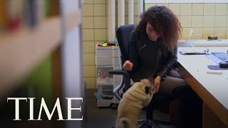 Why Bringing Your Dog To Work Can Be Great For (Almost) Everyone | TIME