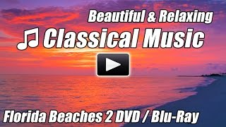 Relaxing CLASSICAL MUSIC for Studying Beautiful Background Instrumental Study Relax Piano Beethoven