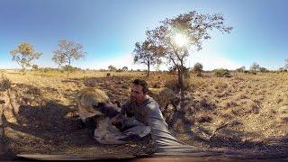 GoPro VR: Hyenas Wrestling With Kevin Richardson