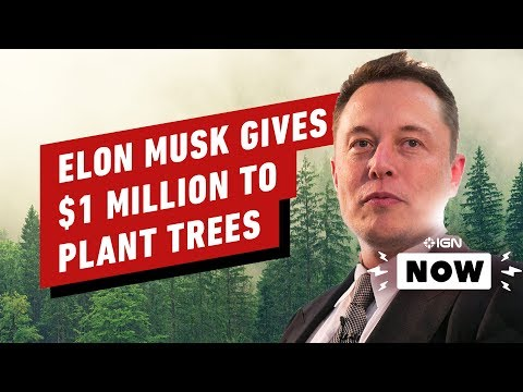 Elon Musk Donates $1 Million to YouTuber's Charity – IGN Now