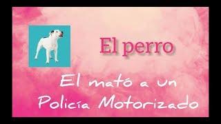 El perro - El mató a un Policía Motorizado | Diego Vital (cover)