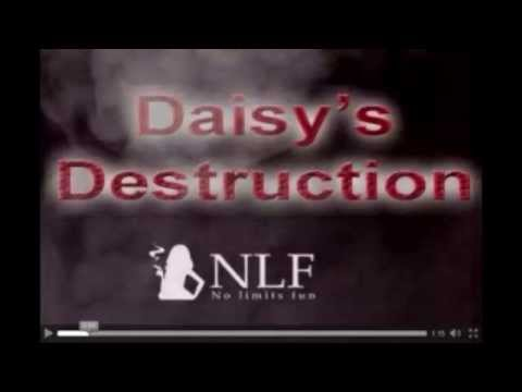 Daisy's Destruction: ¿Existe o no?
