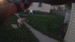 Newly Released Graphic Bodycam Video Shows Cop Shooting Dogs
