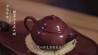[茶香记·生活家] 实用帖!紫砂壶开壶的那些事儿