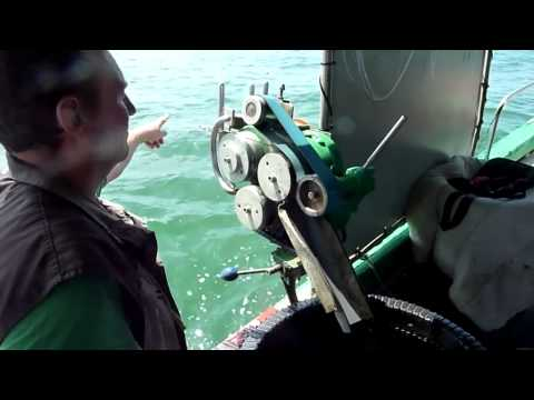 Sea Trial. Longline Shooter Prototype