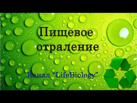 Лечение печени гомеопатическими препаратами