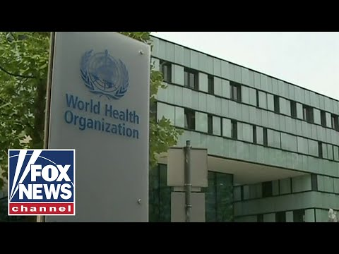 World Health Organzation under scruitiny for not acting fast enough