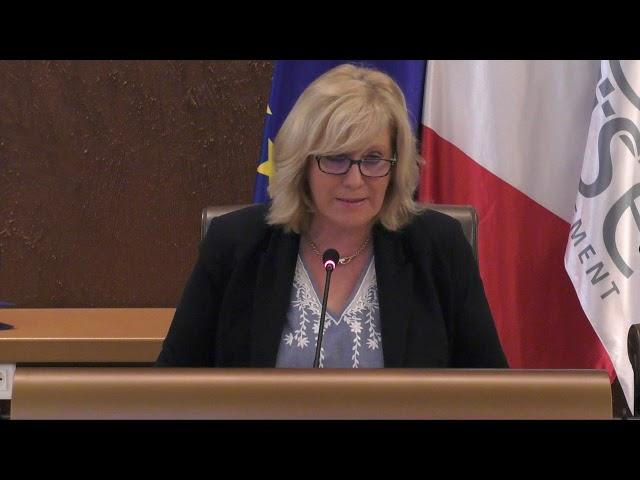 Discours de Nadège Lefebvre Budget Primitif 2019