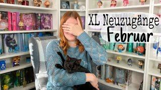 XL Neuzugänge Februar | Bookhaul Februar | rubyrdbooks