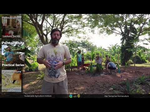 Online Permaculture Design Course (Lectures)