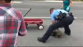 Police officer helps a snapping turtle cross a busy roadway
