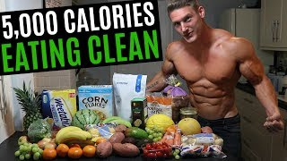 I Ate 5,000 CALORIES Of CLEAN FOOD | IIFYM Full Day Of Eating