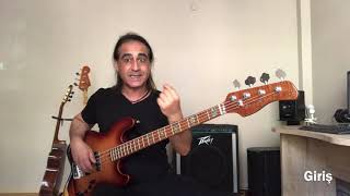Sezen Aksu | Gülşen Sarışın (Bass Cover)
