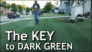 The Key To A DARK GREEN Lawn /// Lets Talk Micronutrients
