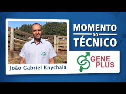 Momento do Técnico João Gabriel