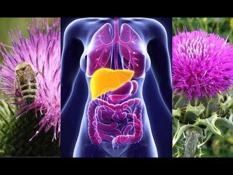 Лекарственные препараты при лечении гипертонии