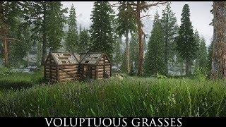 Skyrim SE Mods: Voluptuous Grasses