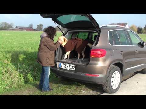 Warm Up Cape für Hunde Thermo Hundemantel | HUND-unterwegs.de