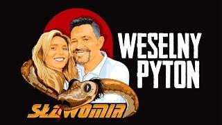 Kadr z teledysku Weselny Pyton tekst piosenki Sławomir