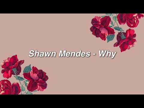 Why – Shawn Mendes