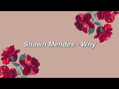 Why Lyrics – Shawn Mendes