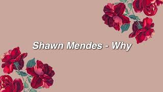 Shawn Mendes   Why { Lyrics }