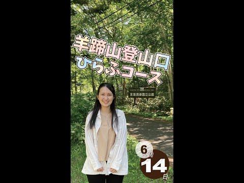 【登山】北海道ニセコからおはよー!<2021年6月14日>|毎週月曜朝8時、ニセコから元気をお届け!
