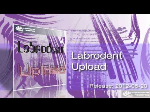 Labrodent - Upload (Original Mix)