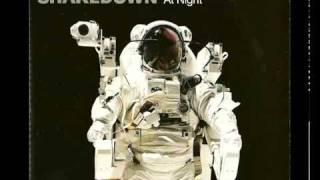 Shakedown-At Night (Mousse T Remix)