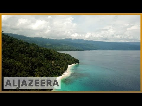 🌏 Race to save the rainforests in Asia-Pacific   Al Jazeera English